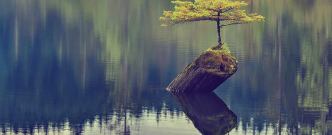resilience-in-positive-psychology-